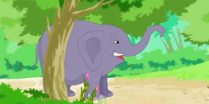 学习动物单词-动物园